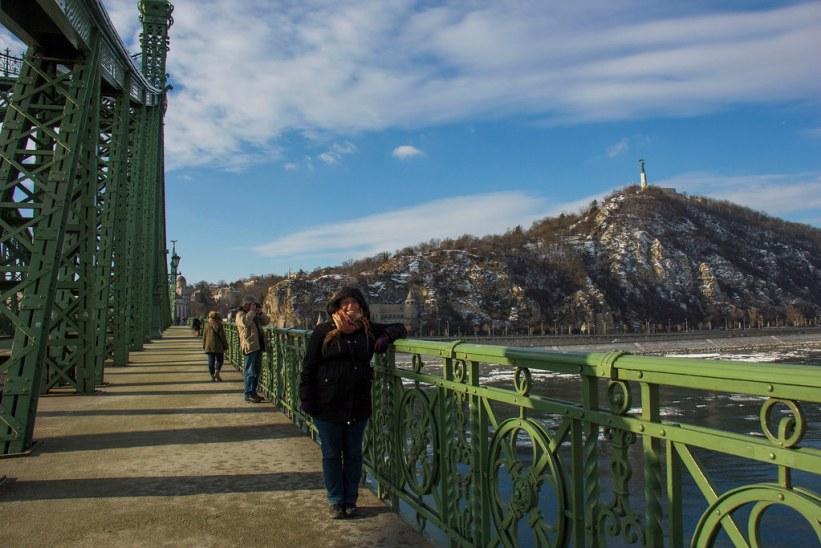 Liberty Bridge I Budapest