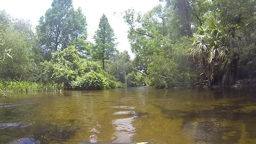 Juniper Springs Creek-009