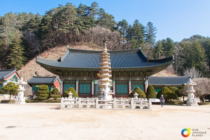 Korea Gangwon Fam Tour (Day 3)