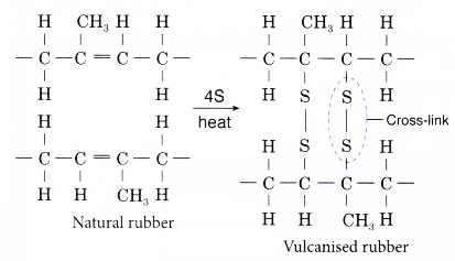 What is the monomer of natural rubber? - A Plus Topper