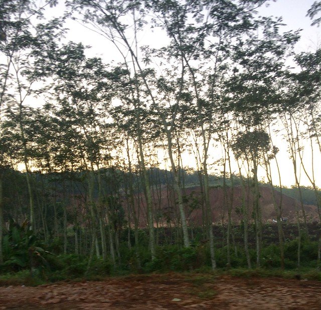 Tanah untuk proyek tol transjawa di pekalongan