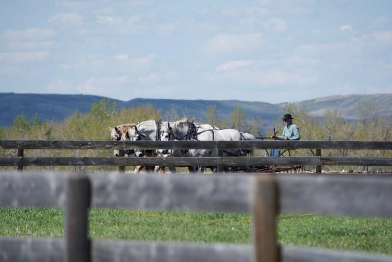 ACS Bar U Ranch Plowing 2017