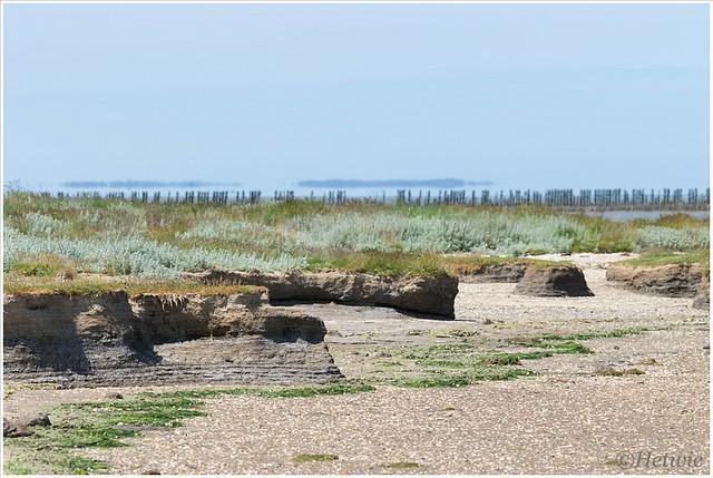 Bij eb valt het was droog en zie je de zandbanken die door de invloed van het water hun vorm hebben gekregen.