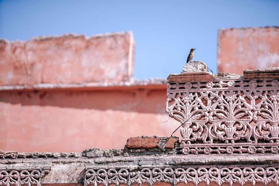 A curious bird sits on top of intricate roof details.