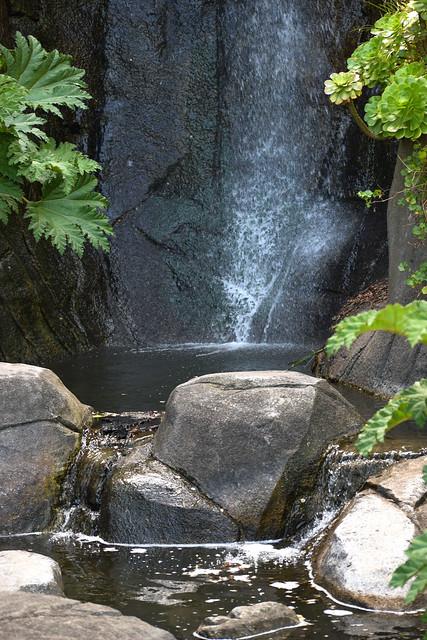 Strawberry Hill Waterfall