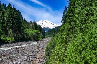 Mount Baker over Bear Creek-001