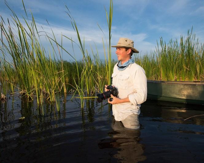 Everglades Snail Kite
