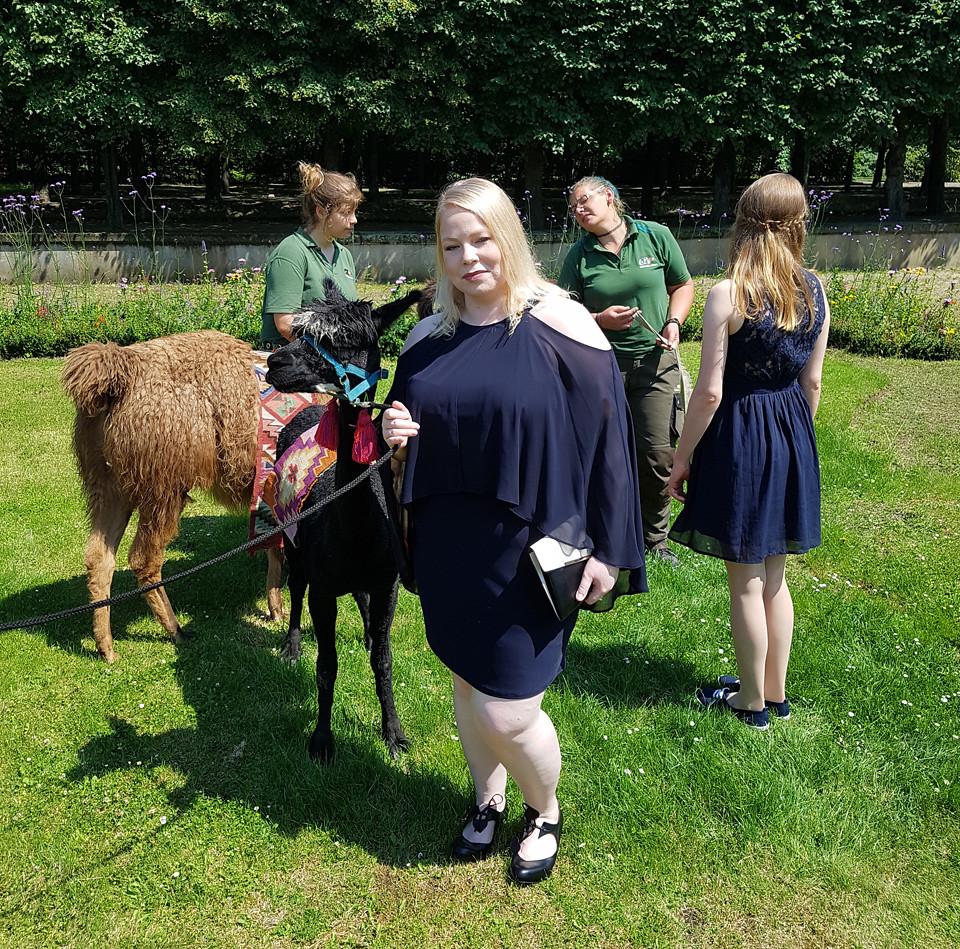 wedding_berlin_llama