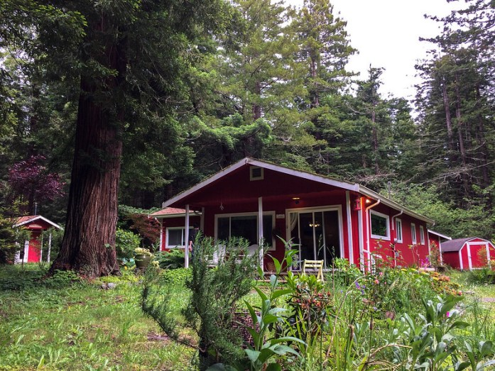 Casa en Trinidad - A house in Trinidad - California - Sequoias