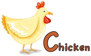 chicken_406x250