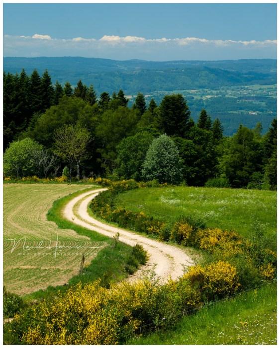 Slingerende paden en wegen die naar plekken achter de heuvel of op de horizon leiden.