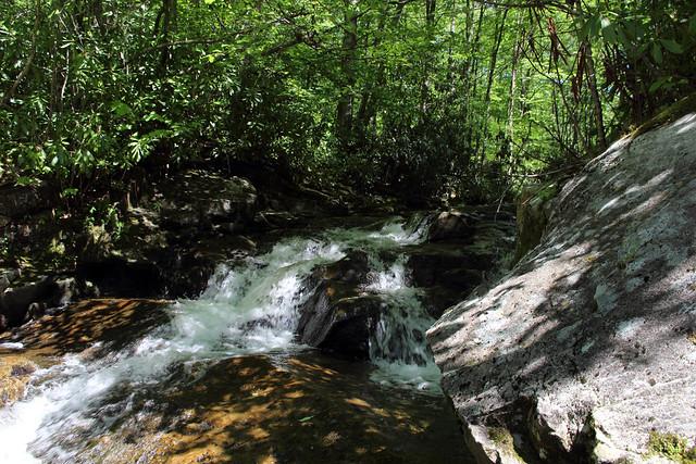 20170603_Tea_Creek_Wilderness_047