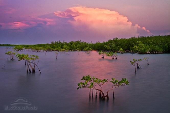 MacStone_FloridaBay_081311