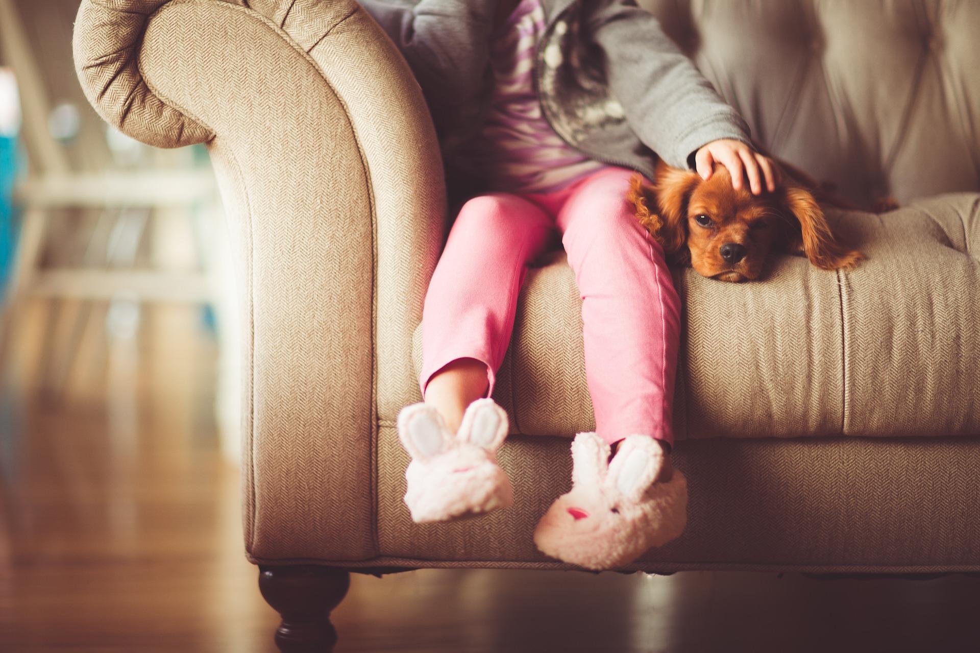 幸せな育て方をされている犬