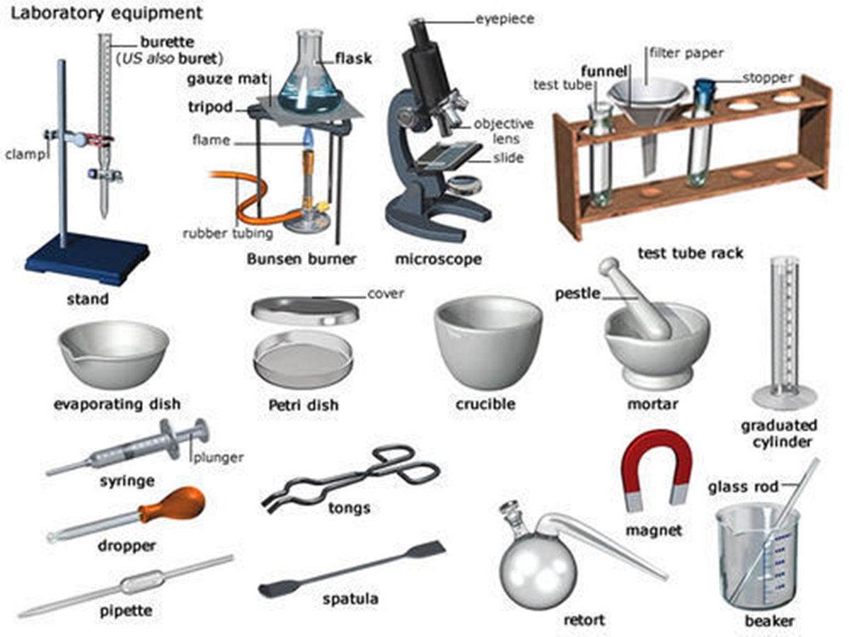 Kitchen Tools And Equipment In English