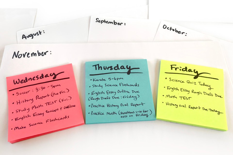 Image result for study schedule
