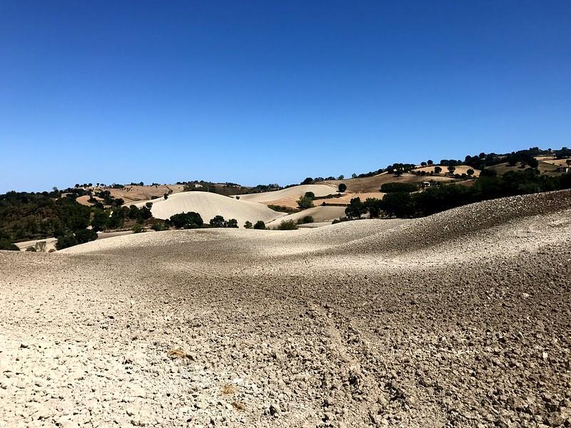 White fields on undulating hills.