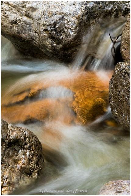 Een stukje hout, prachtig getekend, in het stromende water