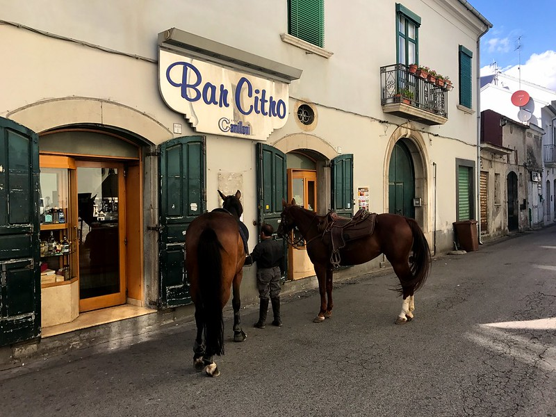 man with two horses in the streets of fisciano town in campagna italy