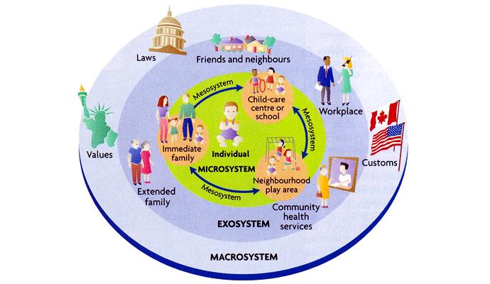 Teoría Ecológica de Bronfenbrenner.   © Berks y Roberts, 2009 (p. 28)
