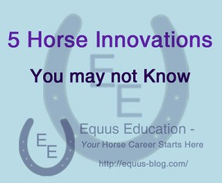 5 Horse Innovations You may not Know | Equus Education