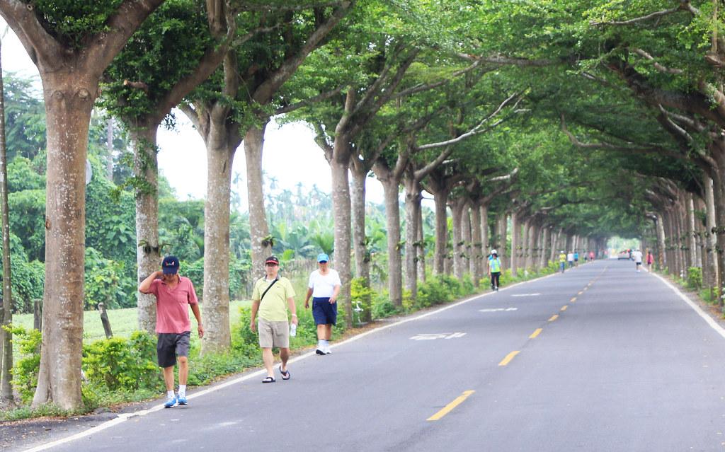 潮州綠色隧道-泗林健走步道 | Wang Fonghu | Flickr