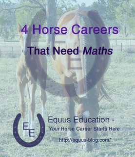 4 Horse Careers that Need Maths | Equus Education