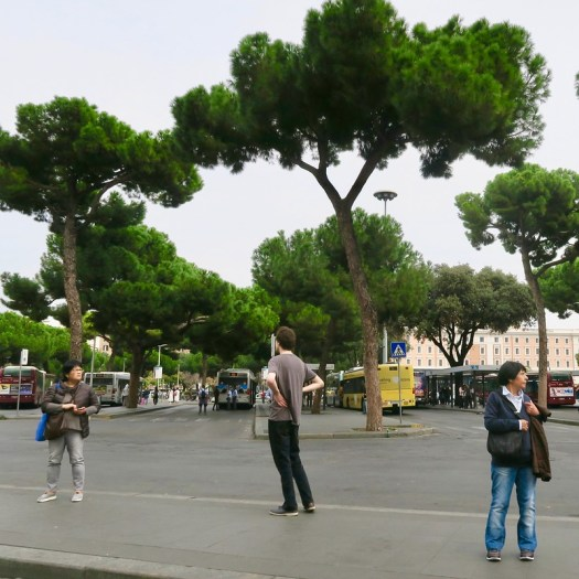 Three people, three trees
