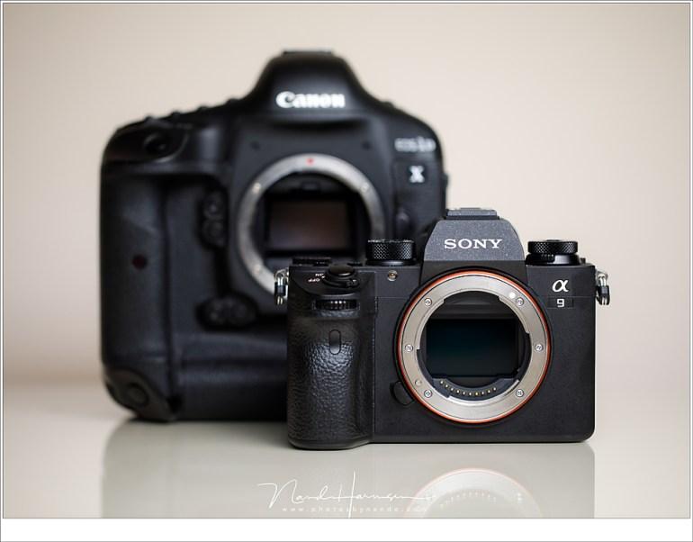 Fullframe camera's; de spiegelreflex en de mirrorless met een fullframe beeldsensor van 24x36mm. Ideaal voor landschappen, of toch niet?