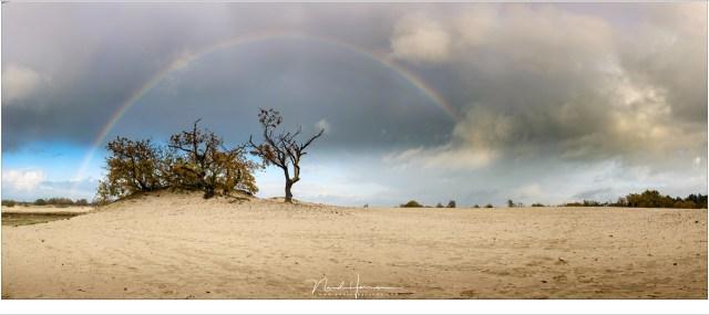 Regenboog panorama boven de Loonse en Drunense Duinen (Nikon D810 + 35mm | ISO64 | f/11 | sluitertijd onbekend | 7 vertikale opnames)