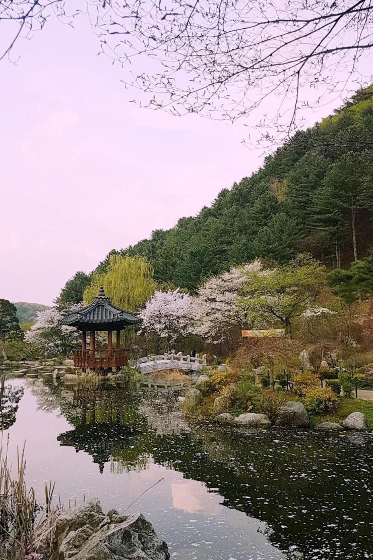 the garden of morning calm in spring