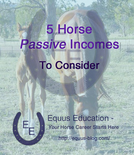 5 Horse Passive Incomes to Consider | Equus Education