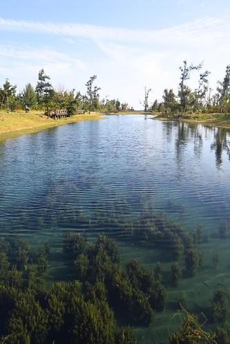 【帶著爺爺去旅行】尚未復原的「台東森林公園」+紅藜的天下(13.6ys)