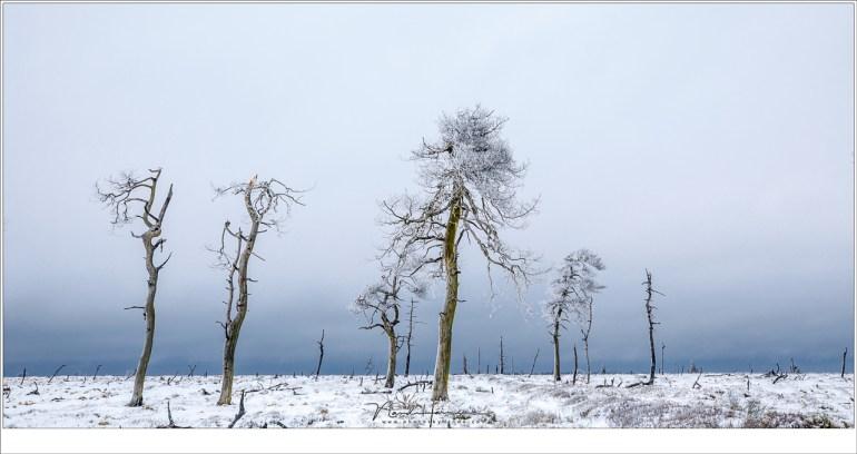 Unieke foto's kun je er niet maken, en tegelijkertijd is het licht in combinatie met de omstandigheden uniek op een heel eigen manier.