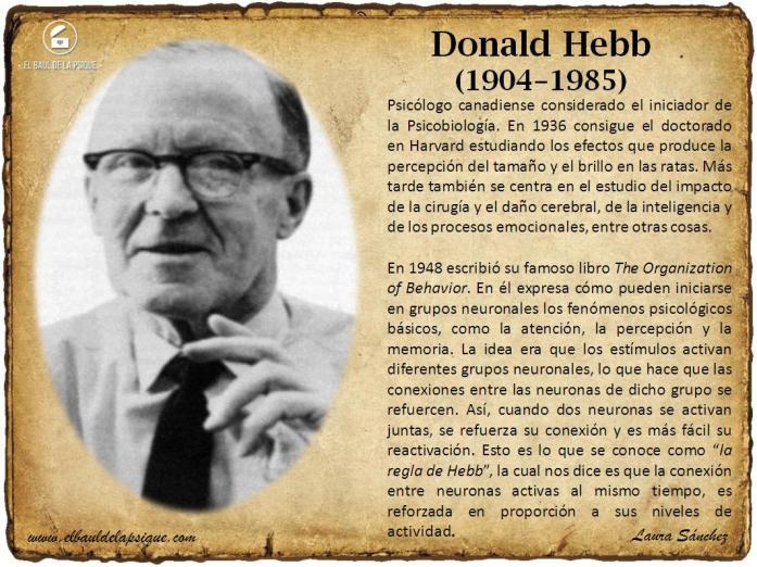 El Baúl de los Autores: Donald Hebb