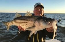 Photo of Man holding up a beautiful fall striped bass