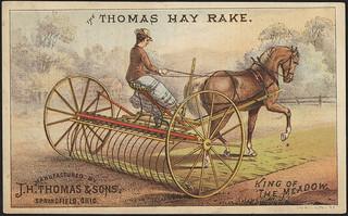 Thomas Hay Rake. (front) | File name: 10_03_001651a Binder ...