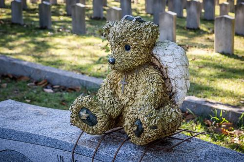 Elmwood Cemetery-027