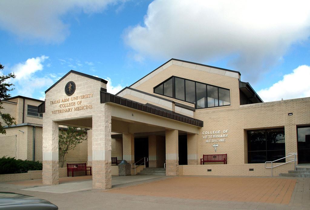 TAMU CVM Buildings