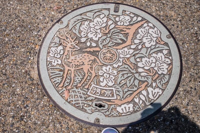 Placa de Nara (con color)