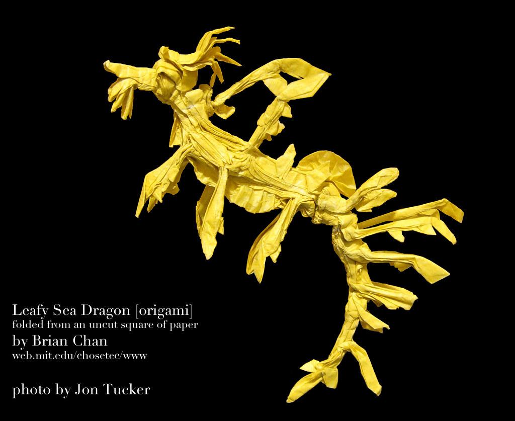 Origami Sea Dragon Diagram Diy Enthusiasts Wiring Diagrams Advanced Fox Instructions Leafy Tutorial Lets Make It Rh Tutor Download Ancient