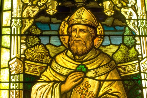 Shamrocks were used to teach about the Holy Trinity