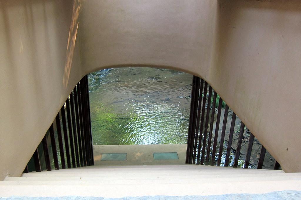 Pa Mill Run Fallingwater Hatch In The Southeast