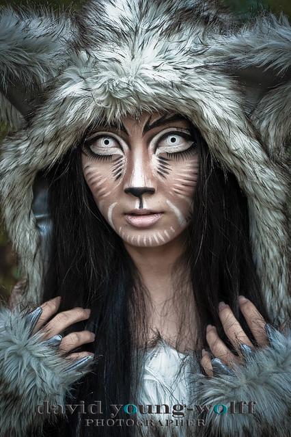 Wolf At Night 2 Flickr Photo Sharing