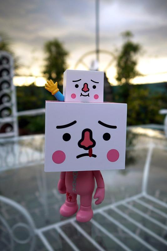 20120129_170604 Gloomy Meets To-Fu Oyako