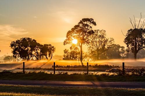 Sunrise 31-05-16
