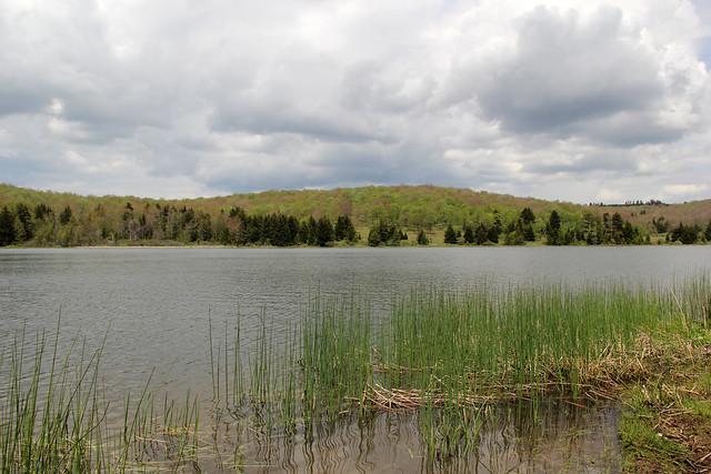 20160526_Spruce_Knob_Lake_051