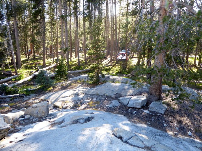 Yosemite Creek Campground - photo by Brian Washburn