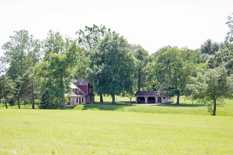 unionville-farm-trees