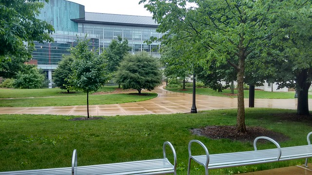 I call this collection Campus when the students are gone